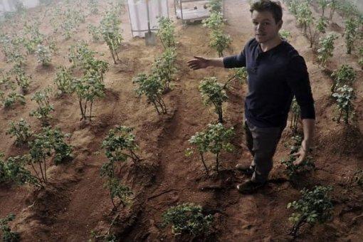 Matt Damon in The Martian